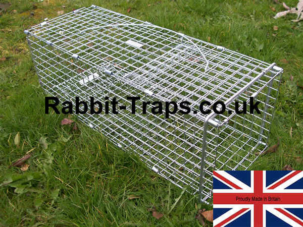 standard rabbit trap